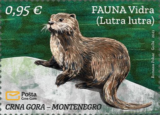 Fauna Vidra (Lutra lutra)